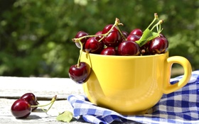 Обои вишня, ягоды, чашка