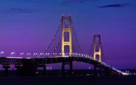 Обои мост, огни, вечер