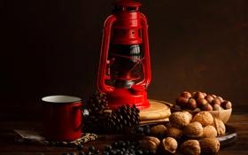 Обои ягоды, лампа, черника, чашка, орехи, красная, шишки