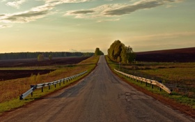 Картинка дорога, поле, лес, облака, пейзаж, природа, знак