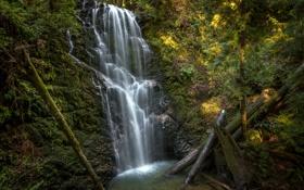 Обои водопад, California, брёвна, Berry Creek Falls