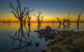 Картинка небо, деревья, Австралия, зарево, озеро Бонни
