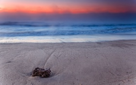 Обои камень, берег, рассвет, туман, аргентина, море
