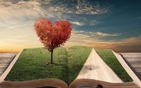 Обои дорога, листья, креатив, дерево, сердце, книга, закладка