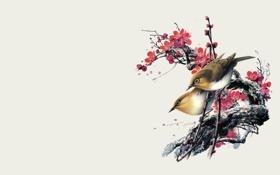 Обои акварель, Рисунок, ветка, птицы, цветы