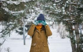 Картинка зима, лес, девушка, снег, деревья, шапка, куртка