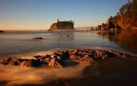 Картинка море, небо, деревья, закат, природа, скала, берег