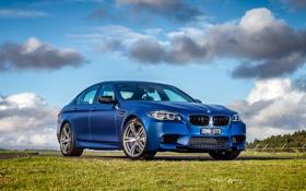 Картинка синий, бмв, BMW, F10, Sedan, 2015