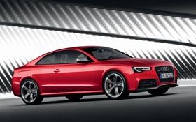Картинка Машина, quattro, Audi RS5, Немецкий конь