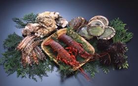 Обои зелень, вкусно, креветки, морепродукты, устрицы, лангусты