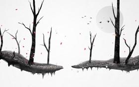 Обои осень, лес, листья, деревья, птицы, Chris Haines