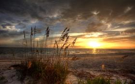 Картинка песок, облака, закат, трава, природа, море