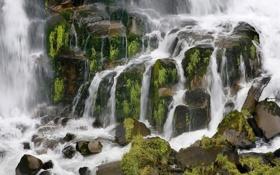 Обои зелень, трава, вода, пейзажи, водопад