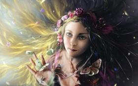 Картинка девушка, бабочки, цветы, арт, разные глаза