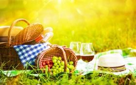 Обои зелень, трава, блики, вино, корзина, поляна, шляпа