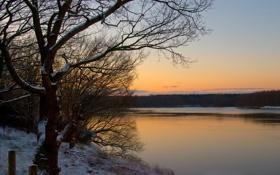 Обои лес, закат, река, берег