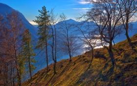 Картинка осень, небо, деревья, горы, озеро, склон