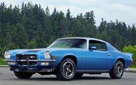 Картинка синий, фон, Chevrolet, Камаро, Шевроле, Camaro, Muscle car