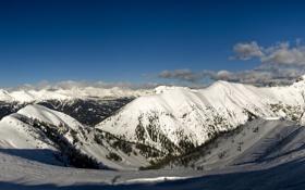Обои альпы, горы, wide