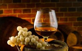 Картинка макро, вино, бокал, виноград, коньяк