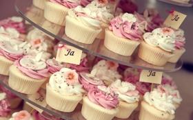 Картинка пирожное, десерт, сладкое, sweet, cupcake, кекс, cream