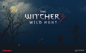 Обои The Witcher 2, CD Projekt RED, The Witcher 3, LiVE SPACE studio, The Witcher 1, ...