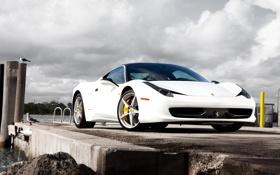 Обои белый, вода, птицы, пирс, Ferrari, white, феррари