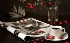 Обои ветки, ягоды, кофе, кружка, журнал