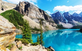 Обои лес, озеро, Canada, landscape, lake, Banff National park, Moraine