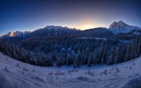 Картинка пейзаж, горы, природа, утро