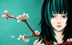 Картинка девушка, цветы, лицо, фон, ветка, арт, персик
