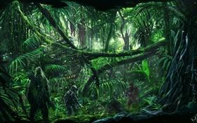 Обои снайпер, лес, солдат, джунгли, деревья
