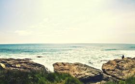 Картинка landscape, камни, трава, вода, волны, море, горизонт