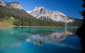 Картинка лес, небо, горы, озеро, Канада, Национальный парк Йохо