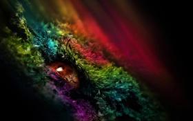 Картинка глаз, узор, зрачок