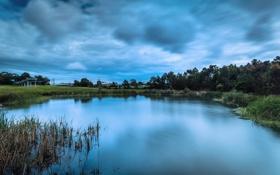 Обои облака, деревья, озеро, пруд, камыш, постройки