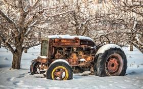 Обои trees, snow, tractor, rust