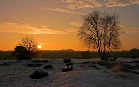 Картинка зима, солнце, закат, скамейка, дерево