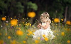 Картинка лето, природа, девочка