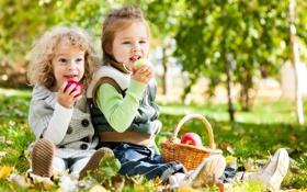 Обои дети, яблоки, парк