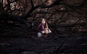 Обои лес, девушка, шорты, ножки