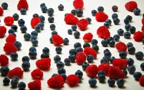 Картинка ягоды, малина, черника