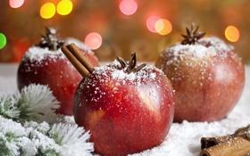 Картинка снег, яблоки, елка, еда, ветка, Новый Год, Рождество