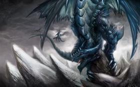 Обои скалы, крылья, драконы, арт, пики, гигантский, пасьт