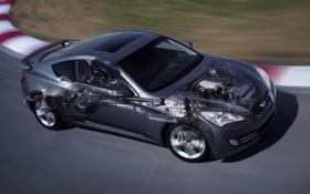 Обои серый, купе, гоночный трек, coupe, передок, hyundai, хёндай