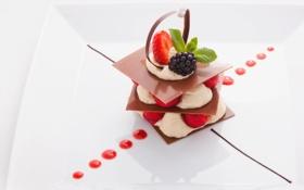 Обои шоколад, клубника, desert, крем, десерт, ежевика, chocolate