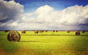 Обои небо, трава, облака, поля, тень, сено, фермы