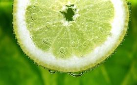 Обои пузырьки, лимон, долька, лайм, цитрус