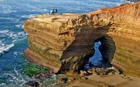Картинка море, океан, скалы, женщина, вид, пара, прибой