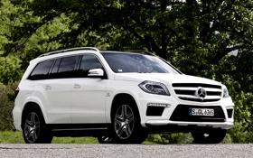 Картинка белый, деревья, фон, Mercedes-Benz, Мерседес, джип, AMG